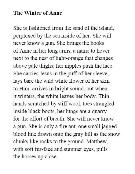 April Michelle Bratten - The Winter of Anne p7